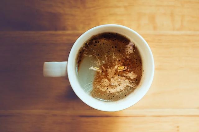 Eine Kaffeetasse steht inmitten des Bildes. In dem Schaum befindet sich das Gesicht einer grimmig dreinblickenden Katze.